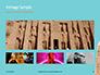 Luxor Obelisk Presentation slide 13