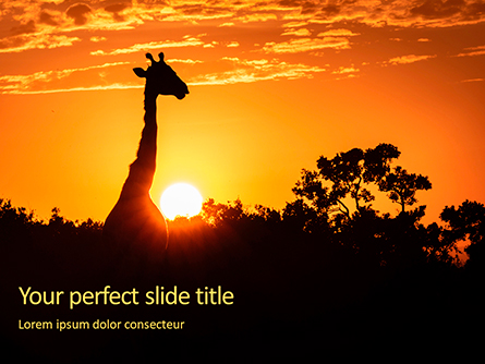 Wild Sunset Presentation Presentation Template, Master Slide