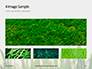 Close Up of Fresh Thick Grass Presentation slide 13