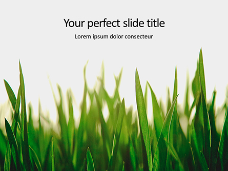 Close Up of Fresh Thick Grass Presentation Presentation Template, Master Slide