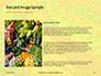 Colorful Fruits and Vegetables Presentation slide 15