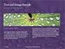 Water Drops on Purple Leaf Presentation slide 14