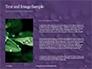 Water Drops on Purple Leaf Presentation slide 15