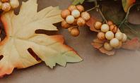 Autumn and Thanksgiving Concept Presentation Presentation Template