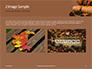 Still Life Harvest with Pumpkins and Gourds for Thanksgiving Presentation slide 11