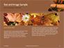 Still Life Harvest with Pumpkins and Gourds for Thanksgiving Presentation slide 14