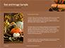 Still Life Harvest with Pumpkins and Gourds for Thanksgiving Presentation slide 15