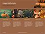 Still Life Harvest with Pumpkins and Gourds for Thanksgiving Presentation slide 16