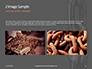 Stainless Metal Chain Presentation slide 11