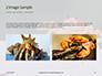 Crab on Rock Presentation slide 11