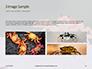 Crab on Rock Presentation slide 12