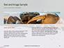 Crab on Rock Presentation slide 14