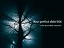 Spooky Night Shot of Tree in Fog Backlit by Streetlight Presentation slide 1