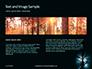 Spooky Night Shot of Tree in Fog Backlit by Streetlight Presentation slide 14
