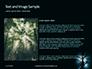 Spooky Night Shot of Tree in Fog Backlit by Streetlight Presentation slide 15