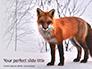 Red Fox in Winter Presentation slide 1
