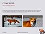 Red Fox in Winter Presentation slide 11