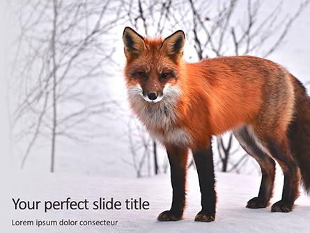 Red Fox in Winter Presentation Presentation Template, Master Slide