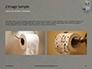 Roll of Toilet Paper in The Holder Presentation slide 11
