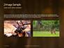 Brown Deer Portrait Presentation slide 11
