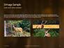 Brown Deer Portrait Presentation slide 12