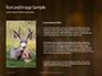 Brown Deer Portrait Presentation slide 15