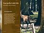 Brown Deer Portrait Presentation slide 9