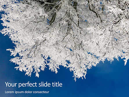 Tree Covered in Snow and Frost Presentation Presentation Template, Master Slide