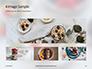 Homemade Oatmeal with Berries Presentation slide 13