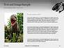 Tyrannosaurus Rex Presentation slide 15
