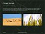 Green Leafed Plant Presentation slide 11