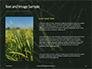 Green Leafed Plant Presentation slide 15