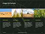 Green Leafed Plant Presentation slide 16
