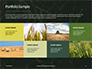 Green Leafed Plant Presentation slide 17