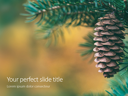 Pine Cone on Branch Presentation Presentation Template, Master Slide
