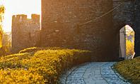 Medieval Fortress Presentation Presentation Template