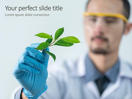 Scientist is Examining Samples of Plants Presentation Presentation Template, Master Slide
