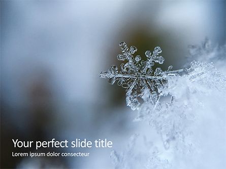 Closeup of a Snowflake Presentation Presentation Template, Master Slide
