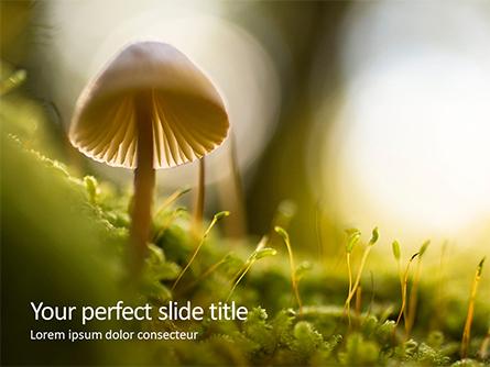 Cute Toadstool Macro Presentation Presentation Template, Master Slide