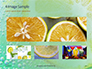 Close-up of Citrus in Water Presentation slide 13