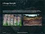 Pile of Wood Logs Presentation slide 11