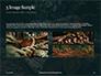 Pile of Wood Logs Presentation slide 12
