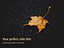 Yellow Wet Leaf on Asphalt Presentation slide 1