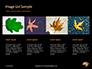 Yellow Wet Leaf on Asphalt Presentation slide 16