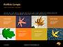 Yellow Wet Leaf on Asphalt Presentation slide 17