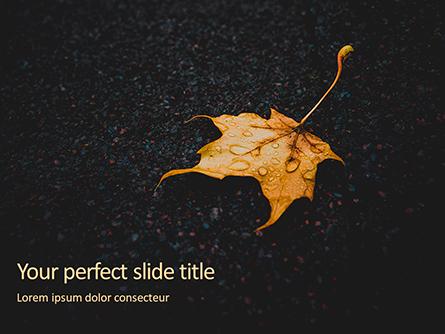 Yellow Wet Leaf on Asphalt Presentation Presentation Template, Master Slide