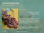 Walnuts Scattered from Burlap Bag on Wooden Table Presentation slide 15