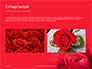 Beautiful Red Rose Close Up Presentation slide 11