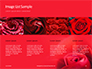 Beautiful Red Rose Close Up Presentation slide 16