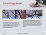 Bullfinch Presentation slide 14